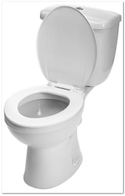トイレクリーニング(トイレ室内清掃)